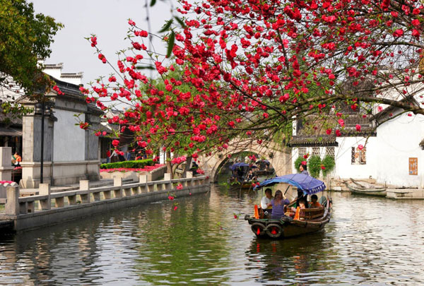 Travel in Spring like the Beautiful Chinese Poem