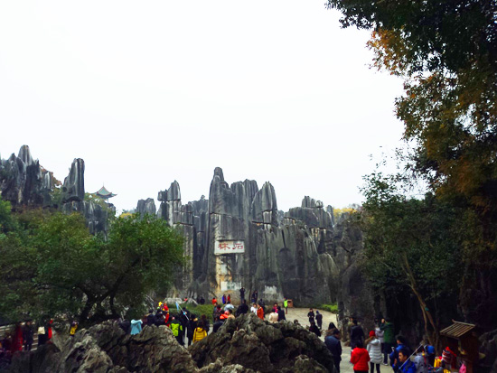 Stone Forest2