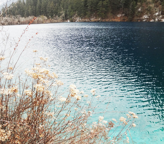 Travel with Bertina-The Beauty of Jiuzhaigou in Winter