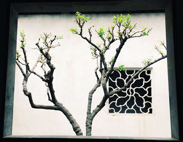Changeful Windows in Suzhou Gardens