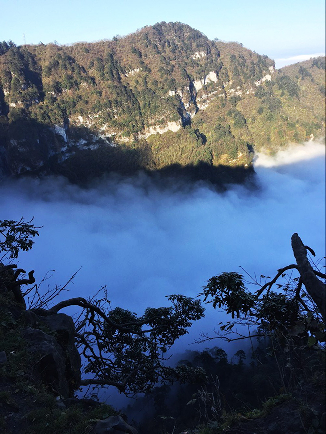 Gorgeous View with Clouds of Mount Emei