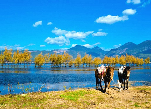 Lijiang Leisure Tour