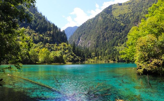 Lake in Jiuzhaigou