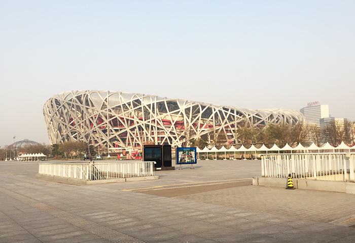 Bird Nest Outside View